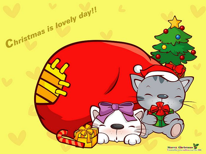 圣诞节可爱小猫壁纸  christmas wallpaper -  christmas gifts,高