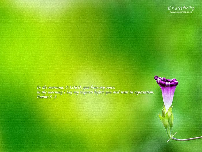 wallpapers windows 8_10. wallpaper scenery. beautiful wallpaper scenery. beautiful wallpaper scenery.